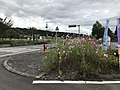 "Cosmos flowers in front of Roadside Station ""Harajiri Waterfall"".jpg"