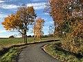 Coteaux de Pamiers, couleurs d'automne.jpg