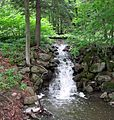 Creek falls at Albany Rural Cemetery - panoramio.jpg
