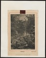 Crocodilus spec. - 1700-1880 - Print - Iconographia Zoologica - Special Collections University of Amsterdam - UBA01 IZ12200068.tif
