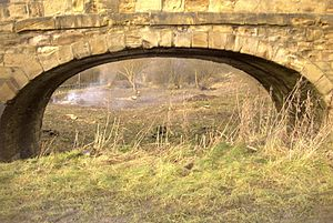 Cromford Canal - The Pinxton arm viewed from where it joins the main canal