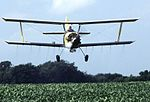 Crop Duster (cropped).jpg