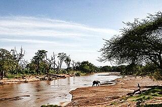 Environmental issues in Kenya