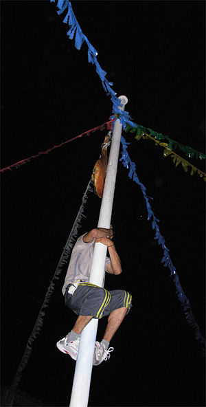 Greasy pole - Climbing a vertical Cockaigne pole.