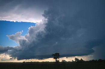 A dark cloud covers most of the sky. Silhouettes of trees can be seen at the bottom.