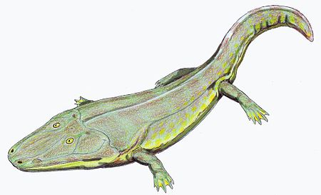 Cyclotosaurus