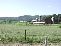 A dairy farm in Cincinnatus, New York.