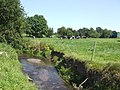 Dairy pasture and stream - geograph.org.uk - 532653.jpg