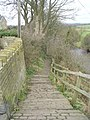Dalesway - by the side of the River Wharfe - Bark Lane - geograph.org.uk - 1186186.jpg