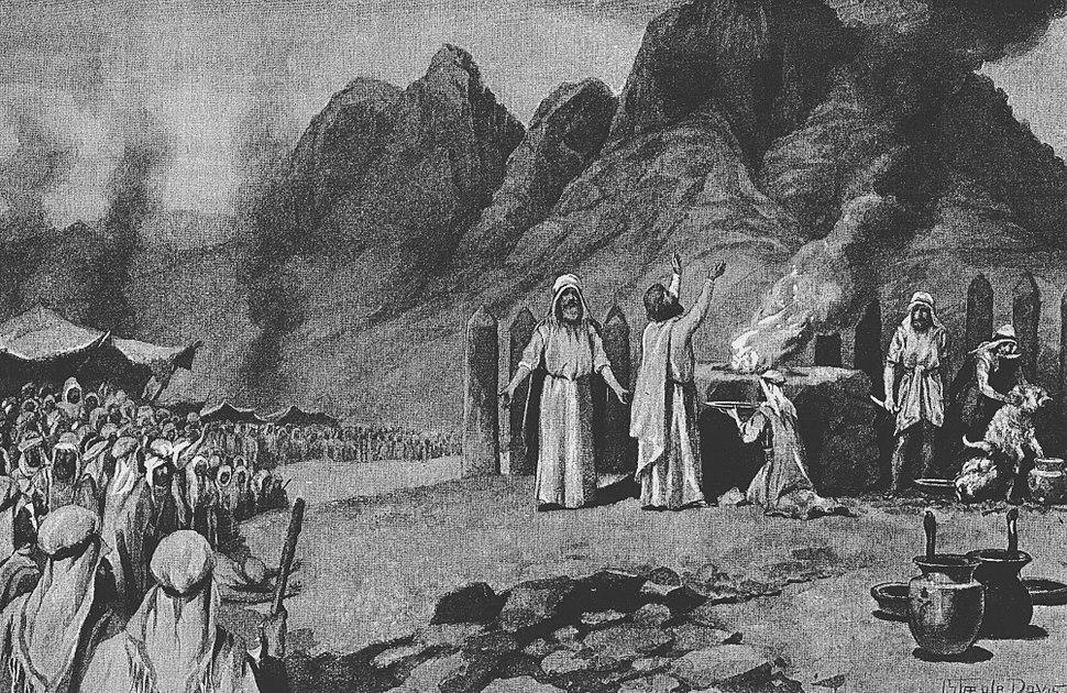 Davis The Covenant Confirmed