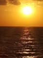 Dead sea,.png