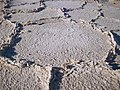Death Valley - 100 0694 (3261719061).jpg