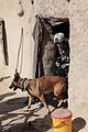 Defense.gov News Photo 110118-A-7213S-206 - U.S. Air Force Staff Sgt. Kayla Wolf a dog handler and her canine partner T-Rex exit a building during a clearing operation in Chesmah Kandahar.jpg