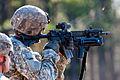 Defense.gov photo essay 111201-A-3108M-006.jpg