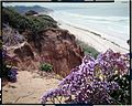 Del Mar, California.jpg