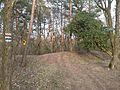 Der Einstieg in den Naturlehrpfad Glindower Höhe - panoramio.jpg