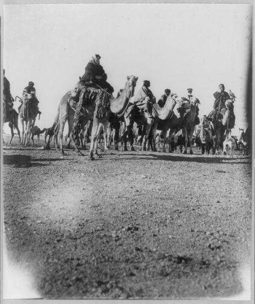 File:Desert caravan LCCN2001705578.tif