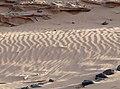 Desert sands (34225575765).jpg