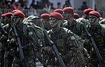 Desfile cívico-militar de 7 de Setembro (21229438601).jpg