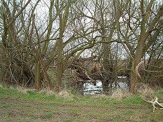 Dew pond - Image: Dew pond west leake
