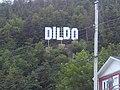 Dildo Sign 2019.jpg