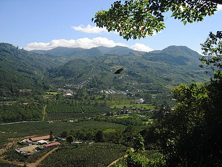 A coffee plantation in the Orosi Valley DirkvdM orosi valley bird.jpg