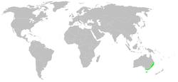 [Image: 250px-Distribution.deinopis.subrufa.1.png]