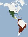 Distribution of Tadarida brasiliensis.png