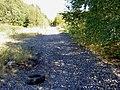 Disused railway line. - geograph.org.uk - 548786.jpg
