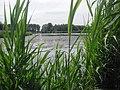 Dobbeplas - Pijnacker-Nootdorp - 2009 - panoramio.jpg