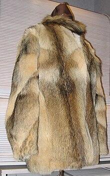 Dog fur skin jacket (front).JPG