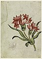 Drawing, Woodblock Trial Proof for a Printed Textile, 1790–1800 (CH 18167671).jpg