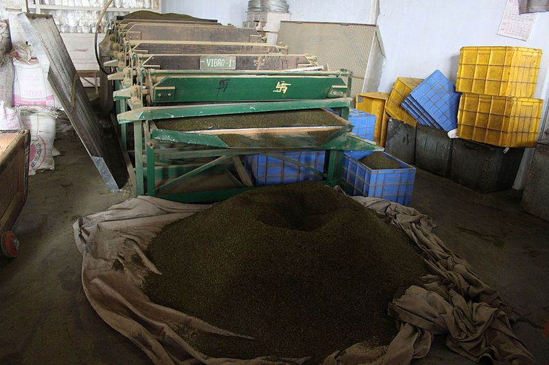 File:Dried tea, Jayshree's Puttabong tea factory, Darjeeling, India (8131931653).jpg