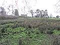 Drumhirk Townland - geograph.org.uk - 309227.jpg