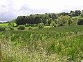 Drumhonish Townland - geograph.org.uk - 1404847.jpg