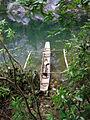 Dug-out canoe along Cadacan River Samar.JPG