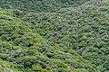 Eastern side of Mount Taranaki 06.jpg