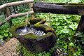 Eisenkappel Troegern Silber Bruendl 27072008 88.jpg