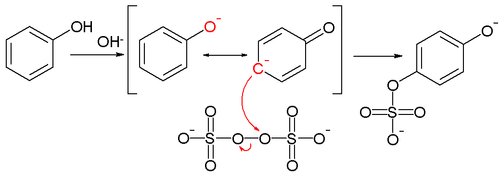 The Elbs persulfate oxidation reaction mechanism