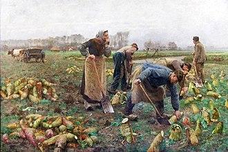 Museum van Deinze en de Leiestreek - Beet harvest by Emile Claus