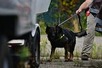 Eustis canine handlers certify international contractors 150831-F-GX122-129.jpg