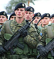FSK-KSF Kosovo Security Force BRSH.jpg