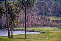 Fairway und Green 3 des Stadium Courses http-reisememo.ch-^p=7993 - panoramio.jpg