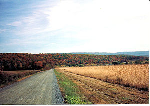 Macadam - Image: Fall Country Road (Macadam)