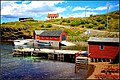 Family Road Trip to Newfoundland July 12th-28th 2017 (38077827014).jpg