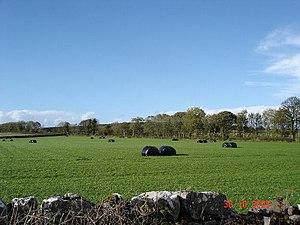 Pantasaph - Image: Farmland at Pantasaph geograph.org.uk 72220
