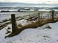 Farmland on Cnoc Navie - geograph.org.uk - 135304.jpg