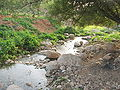 Fatzael Springs and water system 017.JPG