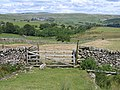 Field gate and view to Malham Cove - geograph.org.uk - 718399.jpg