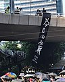 Fight for Freedom, Hong Kong.jpg